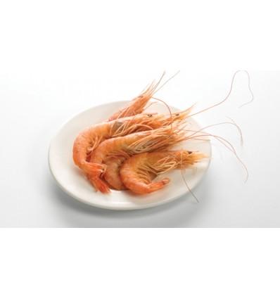 Crevettes cuites 60/80